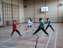 msa-fencing-web